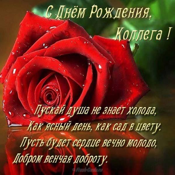 Открытка поздравление с днем рождения коллегам скачать бесплатно на сайте otkrytkivsem.ru
