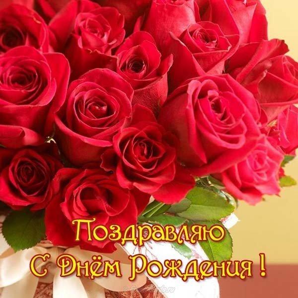 Открытка поздравляю с днем рождения скачать бесплатно на сайте otkrytkivsem.ru