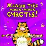 Открытка прикольная с днем рождения Антону скачать бесплатно на сайте otkrytkivsem.ru