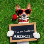 Открытка прикольная с днем рождения Анжела скачать бесплатно на сайте otkrytkivsem.ru