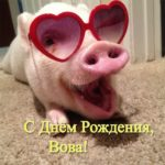 Открытка прикольная с днем рождения Вова скачать бесплатно на сайте otkrytkivsem.ru