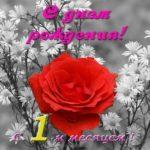Открытка с 1 месяцем мальчику скачать бесплатно на сайте otkrytkivsem.ru