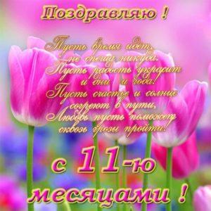 Открытка с 11 месяцами девочке скачать бесплатно на сайте otkrytkivsem.ru