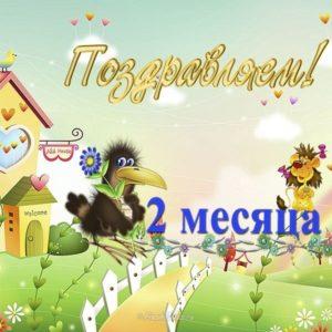 Открытка с 2 месяцами мальчика скачать бесплатно на сайте otkrytkivsem.ru