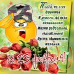 Открытка с 23 февраля женщинам прикольная бесплатная скачать бесплатно на сайте otkrytkivsem.ru