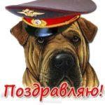 Открытка с днем милиции с приколом скачать бесплатно на сайте otkrytkivsem.ru