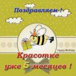 Открытка с днем рождения 5 месяцев девочке скачать бесплатно на сайте otkrytkivsem.ru