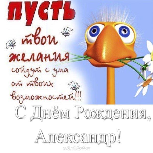 otkrytka s dnem rozhdeniya aleksandr prikolnaya