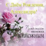 Открытка с днем рождения Александра скачать бесплатно на сайте otkrytkivsem.ru
