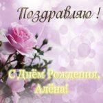 Открытка с днем рождения Алена бесплатно скачать бесплатно на сайте otkrytkivsem.ru