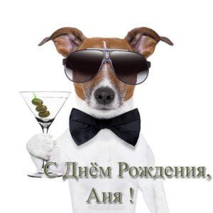 Открытка с днем рождения Аня прикольная скачать бесплатно на сайте otkrytkivsem.ru