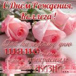 Открытка с днем рождения для коллеги скачать бесплатно на сайте otkrytkivsem.ru