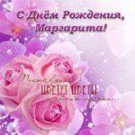 Открытка с днем рождения для Маргариты скачать бесплатно на сайте otkrytkivsem.ru