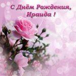 Открытка с днем рождения Ираида скачать бесплатно на сайте otkrytkivsem.ru