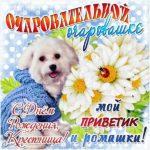 Открытка с днем рождения крестной дочери скачать бесплатно на сайте otkrytkivsem.ru