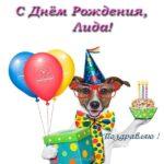 Открытка с днем рождения Лида прикольная скачать бесплатно на сайте otkrytkivsem.ru