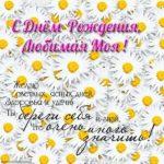 Открытка с днем рождения любимой жене скачать скачать бесплатно на сайте otkrytkivsem.ru