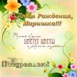 Открытка с днем рождения Маришка скачать бесплатно на сайте otkrytkivsem.ru