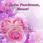 Открытка с днем рождения Маша бесплатно скачать бесплатно на сайте otkrytkivsem.ru