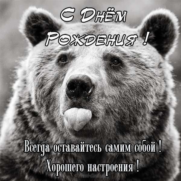 Открытка с днем рождения медведи