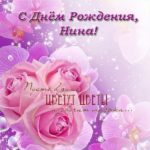 Открытка с днем рождения Нина скачать бесплатно на сайте otkrytkivsem.ru