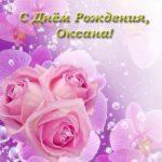 Открытка с днем рождения Оксана с Розами скачать бесплатно на сайте otkrytkivsem.ru