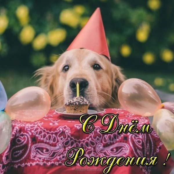 Открытка с днем рождения подруге детства прикольная скачать бесплатно на сайте otkrytkivsem.ru