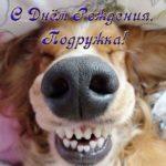 Открытка с днем рождения подруге прикольная скачать бесплатно на сайте otkrytkivsem.ru