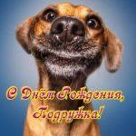 Открытка с днем рождения подруге прикольная юморная скачать бесплатно на сайте otkrytkivsem.ru