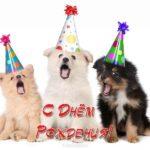 Открытка с днем рождения с щенками скачать бесплатно на сайте otkrytkivsem.ru