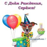 Открытка с днем рождения Сережа прикольная скачать бесплатно на сайте otkrytkivsem.ru