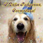 Открытка с днем рождения сестре прикольная смешная скачать бесплатно на сайте otkrytkivsem.ru