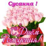 Открытка с днем рождения Сусанна скачать бесплатно на сайте otkrytkivsem.ru