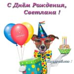 Открытка с днем рождения Светлане прикольная скачать бесплатно на сайте otkrytkivsem.ru