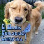 Открытка с днем рождения сына подруги прикольная скачать бесплатно на сайте otkrytkivsem.ru
