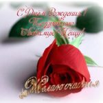 Открытка с днем рождения теще скачать бесплатно на сайте otkrytkivsem.ru