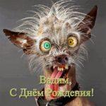 Открытка с днем рождения Вадиму прикольная скачать бесплатно на сайте otkrytkivsem.ru