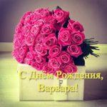 Открытка с днем рождения Варвара скачать бесплатно на сайте otkrytkivsem.ru