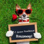 Открытка с днем рождения Владимиру прикольная скачать бесплатно на сайте otkrytkivsem.ru