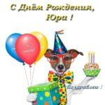 Открытка с днем рождения Юрию прикольная скачать бесплатно на сайте otkrytkivsem.ru