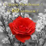 Открытка с днем рождения женщине 60 скачать бесплатно на сайте otkrytkivsem.ru
