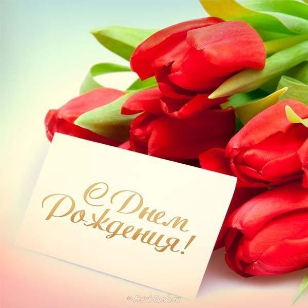 Марта, тюльпаны открытки с днем рождения женщине красивые