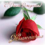 Открытка с днем рождения женщине красивую скачать бесплатно на сайте otkrytkivsem.ru