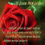 Открытка с днем рождения женщине начальнику красивая скачать бесплатно на сайте otkrytkivsem.ru