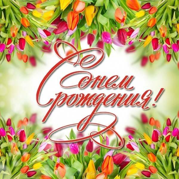 Открытка с днем рождения женщине цветы тюльпаны скачать бесплатно на сайте otkrytkivsem.ru