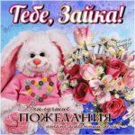 Открытка с днем рождения женщине зайка скачать бесплатно на сайте otkrytkivsem.ru