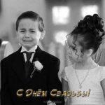Открытка с днем свадьбы прикольная скачать бесплатно скачать бесплатно на сайте otkrytkivsem.ru