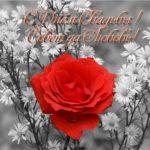 Открытка с днем свадьбы розы скачать бесплатно на сайте otkrytkivsem.ru