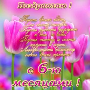 Открытка с днём рождения 6 месяцев девочке скачать бесплатно на сайте otkrytkivsem.ru