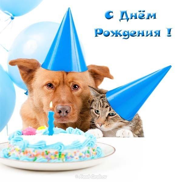 Открытка с днём рождения без цветов скачать бесплатно на сайте otkrytkivsem.ru